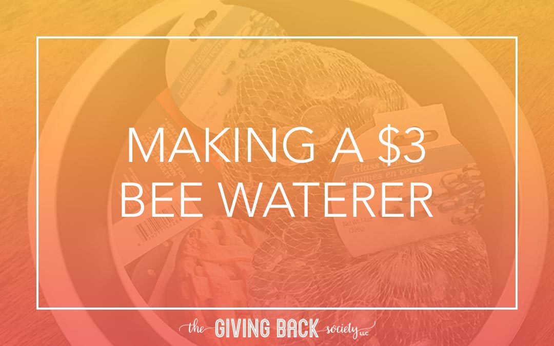 MAKING A $3 BEE WATERER