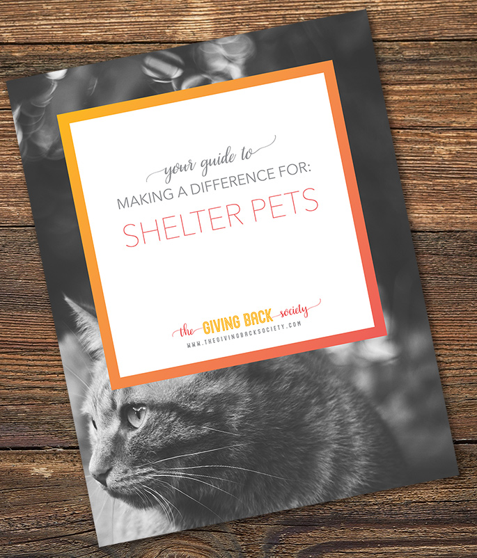 The Giving Back Society | How to Help Shelter Pets and Save Lives
