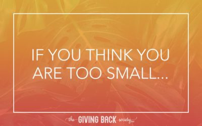 IF YOU THINK YOU ARE TOO SMALL